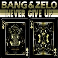 Never Give Up (Single 2011)