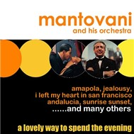 a lovely way to spend the evening - mantovani
