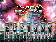 T-ara Collection (2012)