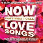 Now That's What I Call Love Songs (2013)