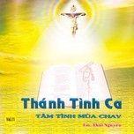 tam tinh mua chay (vol. 11 - 2010) - v.a