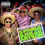 spring break anthem (single) - the lonely island