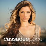 wasting all these tears (single) - cassadee pope