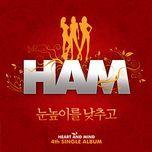 lower your sight (single) - ham