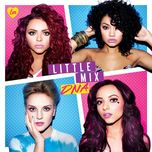 the little mix collection - little mix