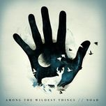 among the wildest things - noah