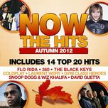 now the hits of autumn 2012 - v.a