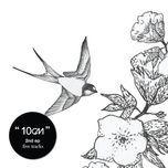 2.0 (2nd album) - 10cm