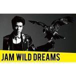 wild dreams (4th album) - jam hsiao (tieu kinh dang)