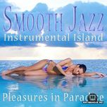 music for pleasure in paradise (2011) - v.a
