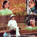 nang chieu (nhung tinh khuc vuot thoi gian 5) - v.a