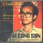 nho trinh cong son (2012) - v.a