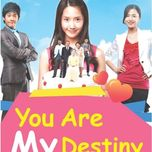 you are my destiny ost - v.a