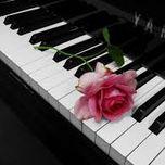 hoa tau piano tuyen chon - v.a
