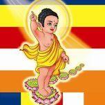 chap tay lay phat (mung dai le phat dan) - v.a