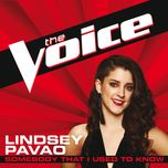 somebody that i used to know (the voice performance) (single) - lindsey pavao