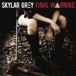 final warning (single) - skylar grey