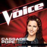 Stupid Boy (The Voice Performance) (Single) - Cassadee Pope