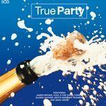 true party - v.a