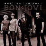 what do you got? (single) - bon jovi