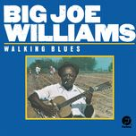 walking blues - big joe williams