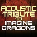 acoustic tribute to imagine dragons - guitar tribute players