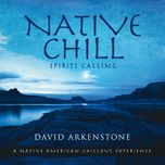 native chill - david arkenstone