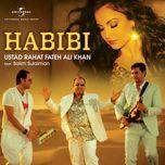 habibi (single) - rahat fateh ali khan, salim sulaiman