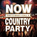 now that's what i call a country party - v.a