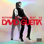 nothing but the beat 2.0 (american version) - david guetta