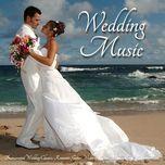 happy wedding (nhung ca khuc hay nhat danh cho dam cuoi) (vol. 3) - v.a