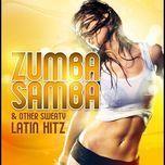 zumba samba - v.a