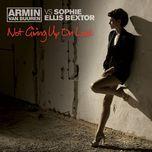 Not Giving Up On Love (Remixes Vol. 2) - Armin van Buuren, Sophie Ellis-Bextor