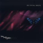 like gods of the sun - my dying bride