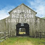 country music - willie nelson