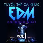 tuyen tap ca khuc edm soi dong nhat (vol. 1) - dj