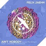 ain't nobody (loves me better) (single) - felix jaehn