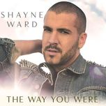 the way you were (remixes single) - shayne ward