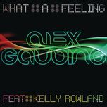 what a feeling (part 1) (remixes) - alex gaudino, kelly rowland