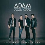 say what you want (single)  - adam, daniel baron
