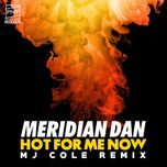hot for me now (mj cole remix) (single) - meridian dan