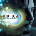 euphoria morning - chris cornell