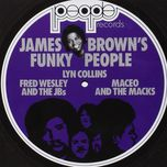 james brown's funky people - v.a