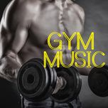 gym music - hip hop (vol. 9) - v.a