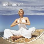 wellness box - v.a