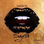 say sum (single) - migos