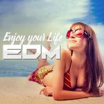 enjoy your life - v.a