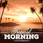 tropical morning - v.a