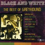 black and white - the best of greyhound - v.a