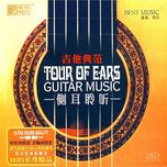 guitar music - tour of ears - ming zi